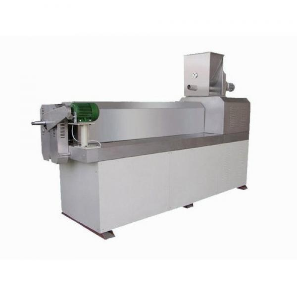 Factory Price Twin Screw Snack Extruder / Corn Chips Snacks Making Machine #1 image