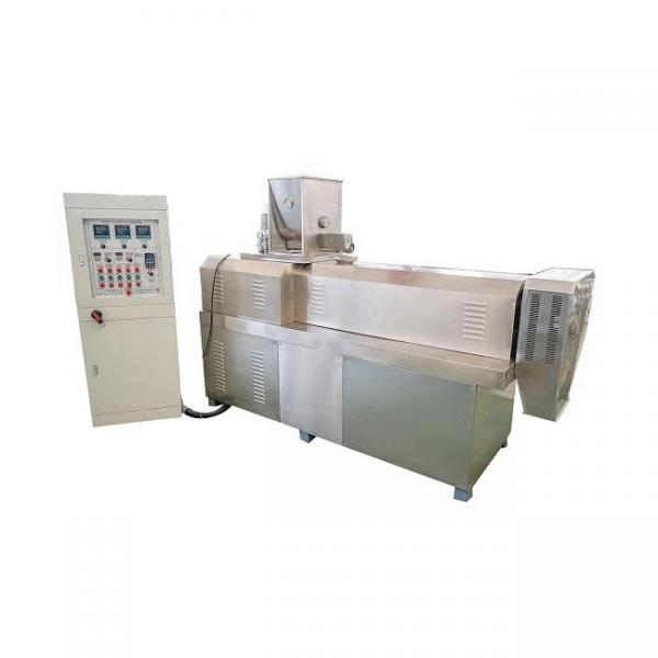 Small Freeze Dryer/Pet Food Production/Snack Food Processing Line Price #1 image