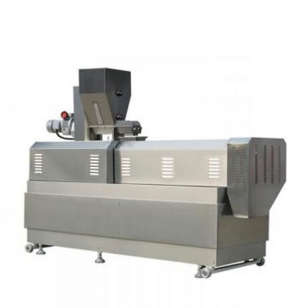 Automatic Double Screw Core Filling Snacks Extruder Machine Industrial Puffed Filling Snacks Making Machine #1 image