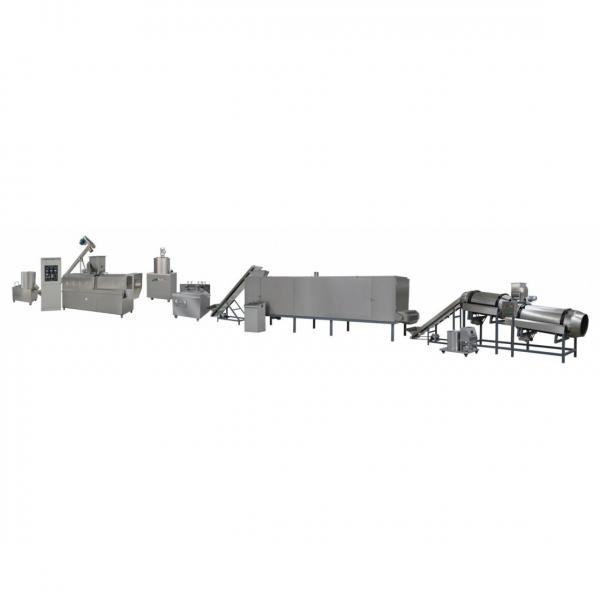 Industrial Double Screw Extruded Bread Crumbs Snack Food Production Line #1 image
