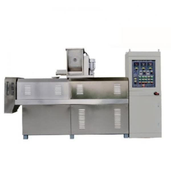 Automatic Skin Vacuum Packaging/Pack/Packing Machine for Meat Chicken Fish Shrimp Sea Food #1 image