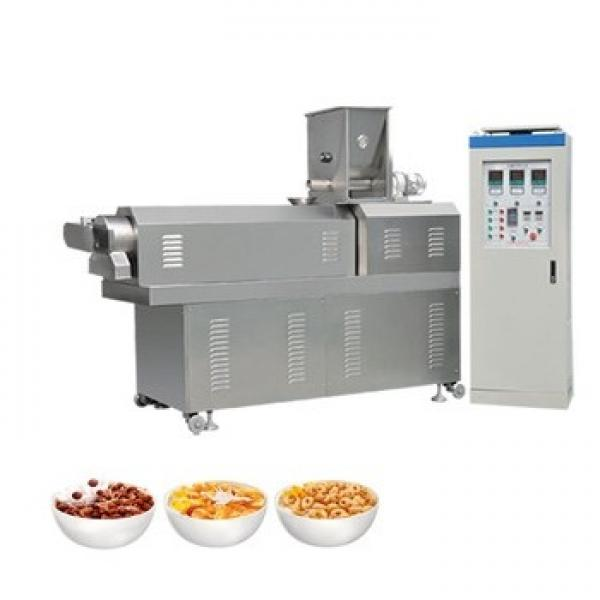 Intelligent Low Temperature Microwave Vacuum Fruit Vegetable Dry Machine with Sterilization and Disinfectin for Food Processing Industries #1 image