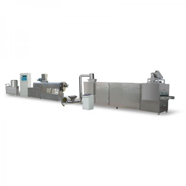 Soya Chunks Nuggets Mince Protein Extruder Making Machine #1 image